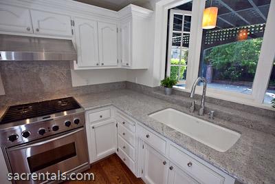 Kitchen Aid Stainless Pro Series Gas Range + Hood. Kohler Sink