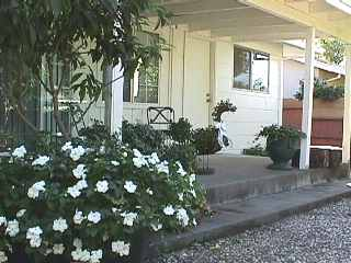 house rentals sacramsnto mc kinley park rent lease 95819
